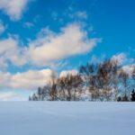 【画像増し】北海道も沖縄も観光資源は万人受けするけど飯で差がでるよな
